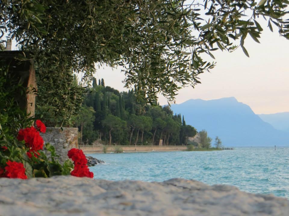 Affacciati sul lago di Claudia Brentonego (San Bonifacio)