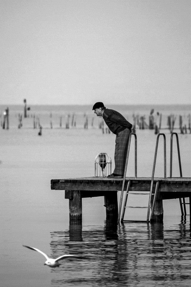 Guardando il lago di Guglielmo Zanchi (Spirano)
